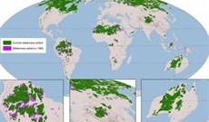 Bản đồ mới tiết lộ sự sụt giảm vùng hoang dã trên toàn cầu