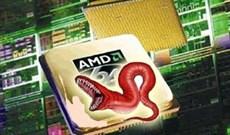 Xuất hiện sâu máy tính tấn công chip xử lý AMD