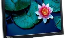 Những lời khuyên hữu ích khi chọn mua Tivi LCD