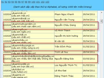 """""""Sốc"""" với những tên miền tiếng Việt lạ"""