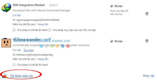 Khắc phục lỗi IDM không bắt link tải file MP4 trên Chrome