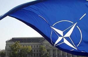 Tin tặc tuyên bố đã đột nhập máy chủ của NATO