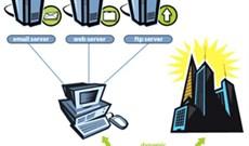 Hướng dẫn cấu hình DNS Service Discovery