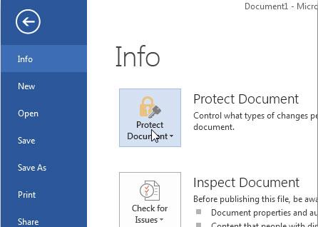 Đặt mật khẩu bảo vệ và mã hóa tài liệu trong Office 2013
