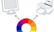 Sự khác biệt về chế độ Color Profile của những bức ảnh