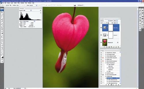 Thiết lập Photoshop Action xử lý ảnh hàng loạt