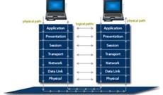Phần cứng trong mô hình tham chiếu OSI: Lớp 6