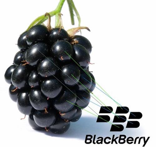 Hàng loạt nhân sự cấp cao rời bỏ Blackberry