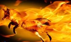 Firefox 18 beta cho desktop và Android