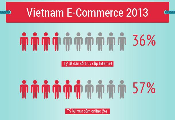 Thống kê sơ bộ ngành thương mại điện tử ở Việt Nam năm 2013