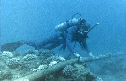 Tuyến cáp biển AAG sẽ được sửa chữa xong vào ngày 9/1/2014