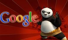 Infographic cách khắc phục hình phạt Panda của Google