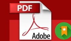 Làm thế nào để tạo Bookmark cho file PDF?
