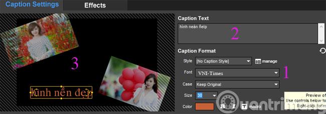 Viết caption lên slideshow