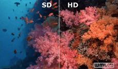 3 mẹo cải thiện chất lượng ảnh độ phân giải thấp