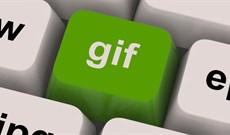 Cách tạo ảnh động trực tuyến bằng Gickr