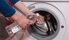 Khử mùi hôi khó chịu trong máy giặt không hề khó