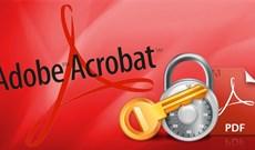 Cách cài đặt mật khẩu file PDF bằng Adobe Acrobat