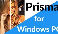 Làm sao sử dụng Prisma trên PC không cài đặt phần mềm?