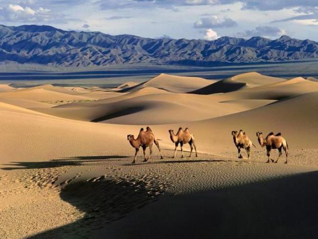 Sa mạc
