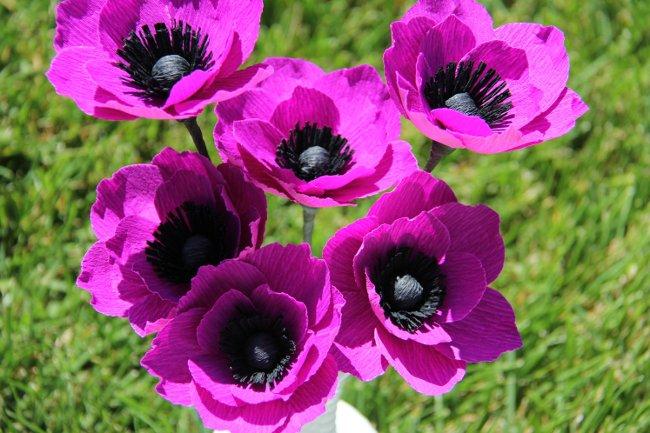 Purple poopy paper flowers