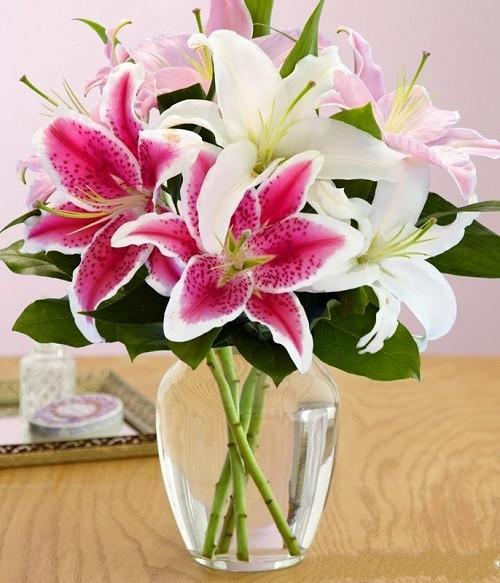 Sự kết hợp giữa những loại hoa ly khác màu, tạo nên sự độc đáo cho bình hoa.
