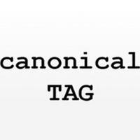 Rel=canonical trong SEO là gì?