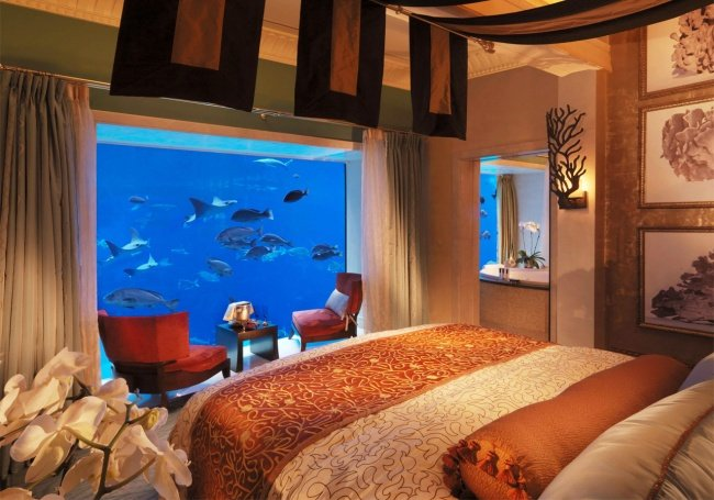 Khu nghỉ dưỡng thì khỏi phải nói, càng sang trọng càng tốt, thậm chí còn có cả một hồ cá lớn
