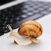 """Truy tìm """"kẻ"""" làm cho Windows khởi động chậm"""