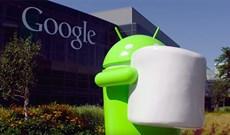 Chạy thử Google Android trên máy tính