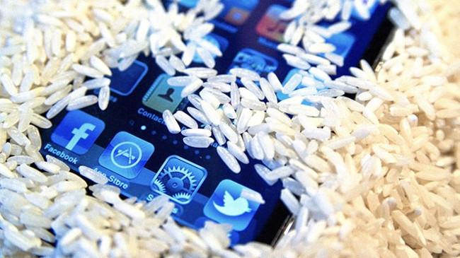 Cho điện thoại vào gạo để hút ẩm