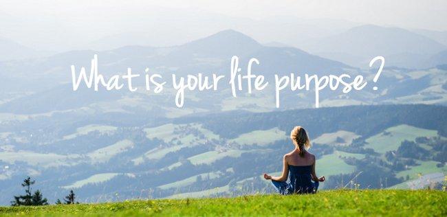Nếu bạn đang đi tìm mục đích cuộc đời mình, hãy đọc bài viết này!