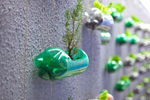Vườn treo trên tường