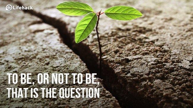 31 câu hỏi làm thay đổi cuộc đời