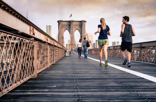 Tập luyện tim mạch và tập thể dục