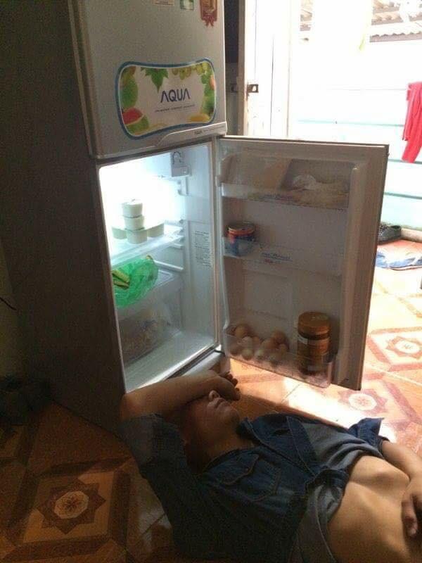 Tủ lạnh cũng có lợi đấy chứ