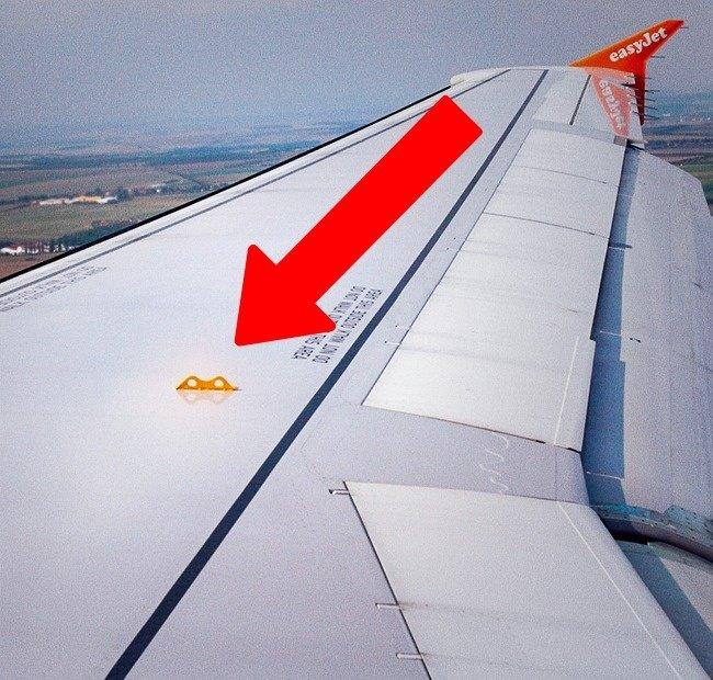 Móc phía trên cánh