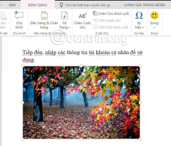 Cách sử dụng Word Online soạn thảo văn bản trực tuyến