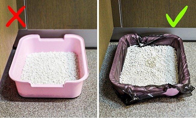 Bọc túi ni lông vào hộp đựng thức ăn cho mèo và đổ thức ăn vào