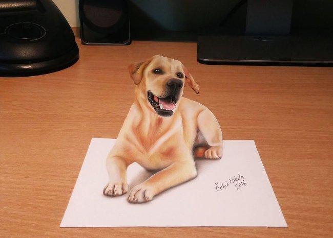 Bản vẽ 3D con chó