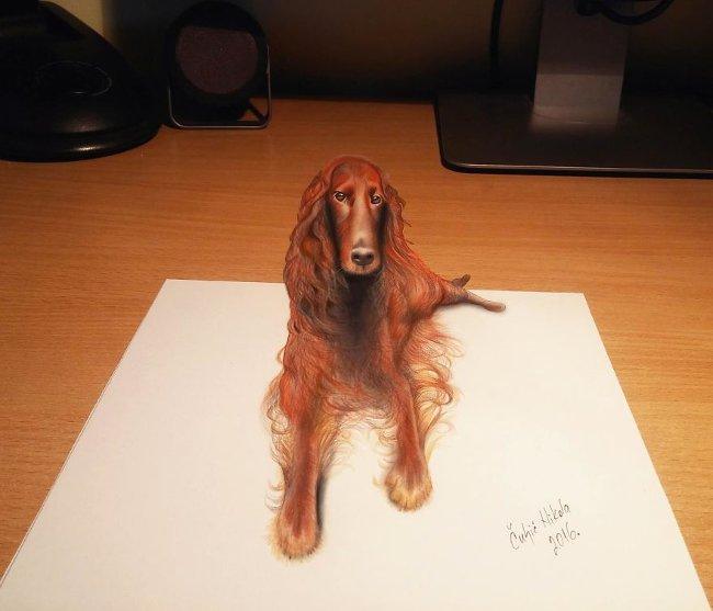 Bản vẽ 3D - chó lông xù