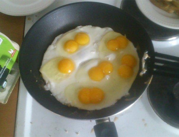 5/6 quả trứng sinh đôi. Thật tuyệt vời!