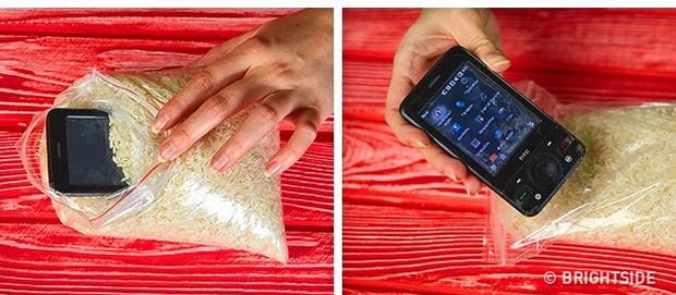 Cho điện thoại vào túi gạo để hút ẩm