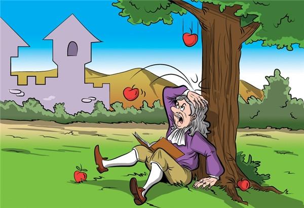 Chuyện Isaac Newton bị táo rơi vào đầu thực sự không xảy ra