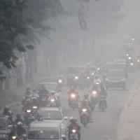 Chuyện khó ngờ: Ô nhiễm không khí có thể ảnh hưởng xấu đến thận của bạn