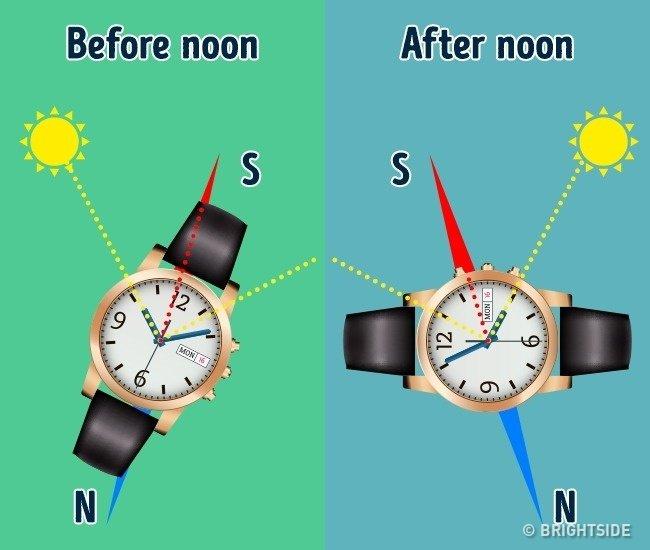 Xác định phương hướng bằng đồng hồ đeo tay.