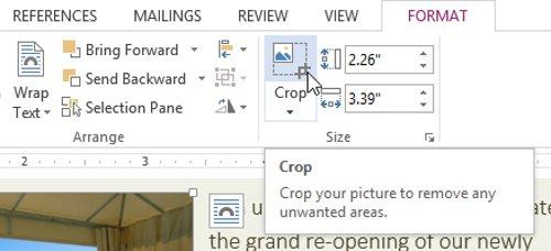 Trên tab Format, hãy nhấp vào lệnh Crop (Cắt).