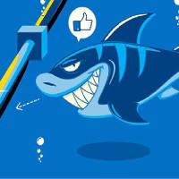 Tại sao cá mập lại thích cắn cáp quang biển?