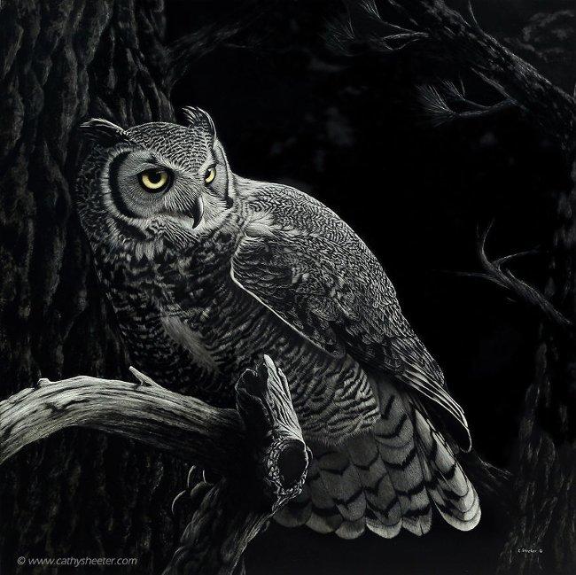 """""""Night Patrol - Tuần tra đêm"""""""
