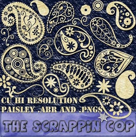Brush thiết kế paisley